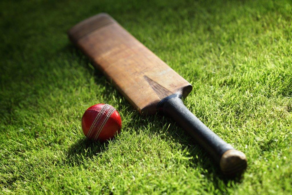 cricket bat and ball on grass