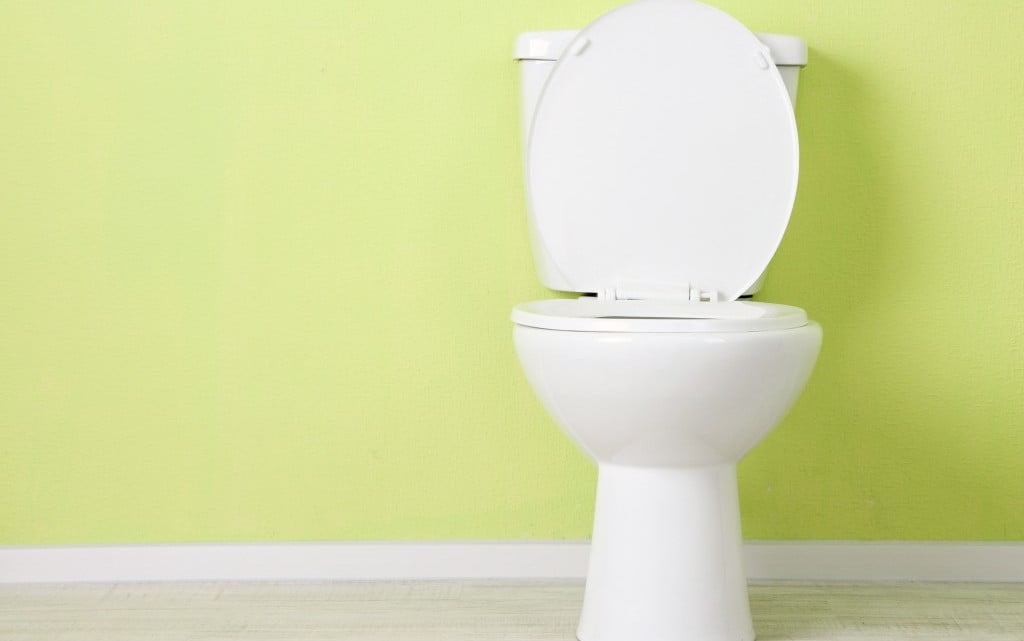 toilet with raised seat,