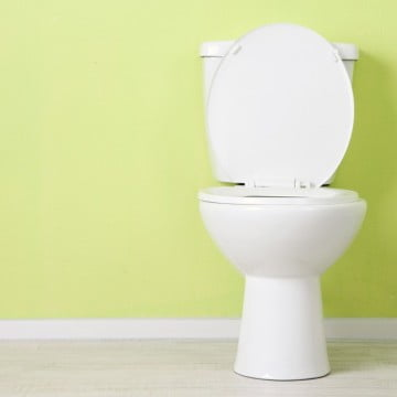toilet with raised seat,