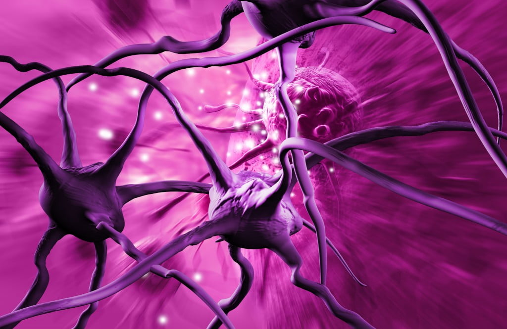 cancer explained: cancer cells in 3D in purple