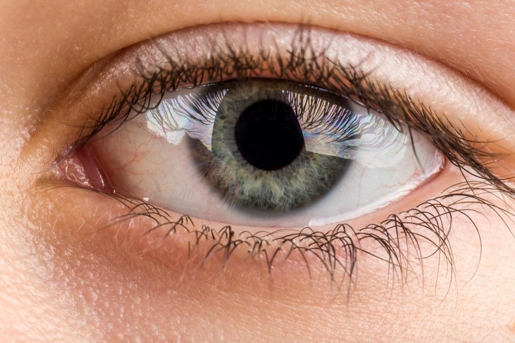 close-up of eye (glaucoma story)