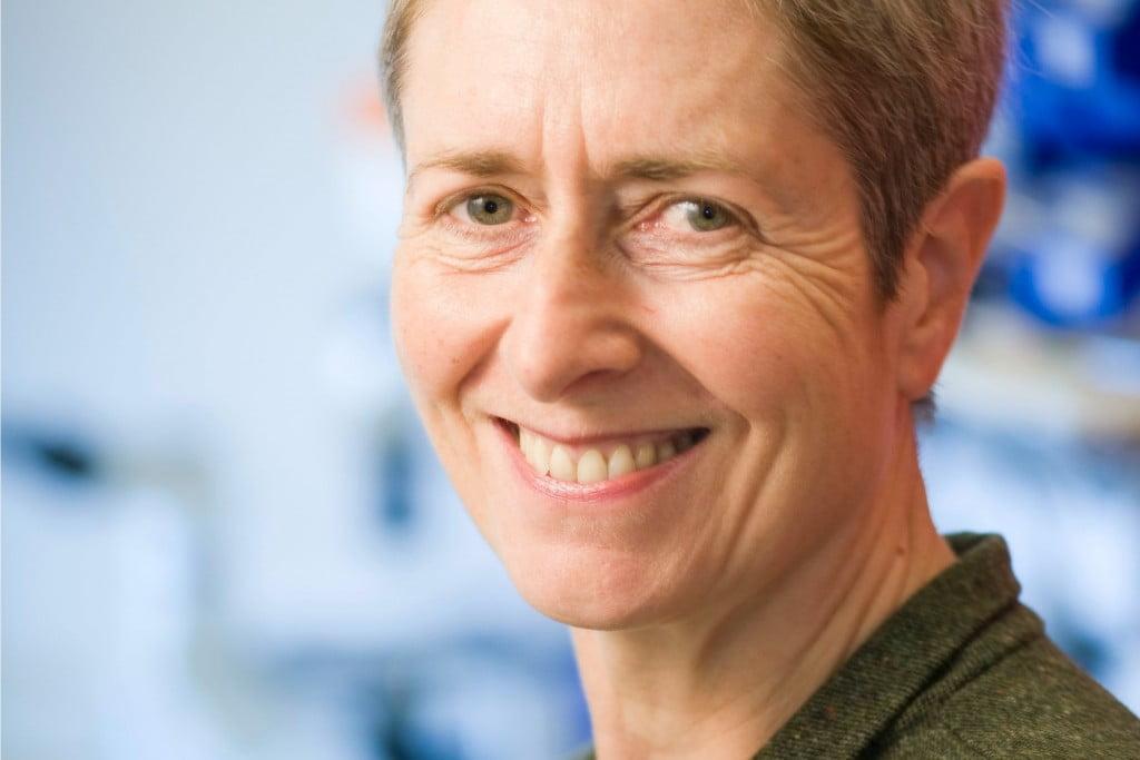 Prof Anne Kelso