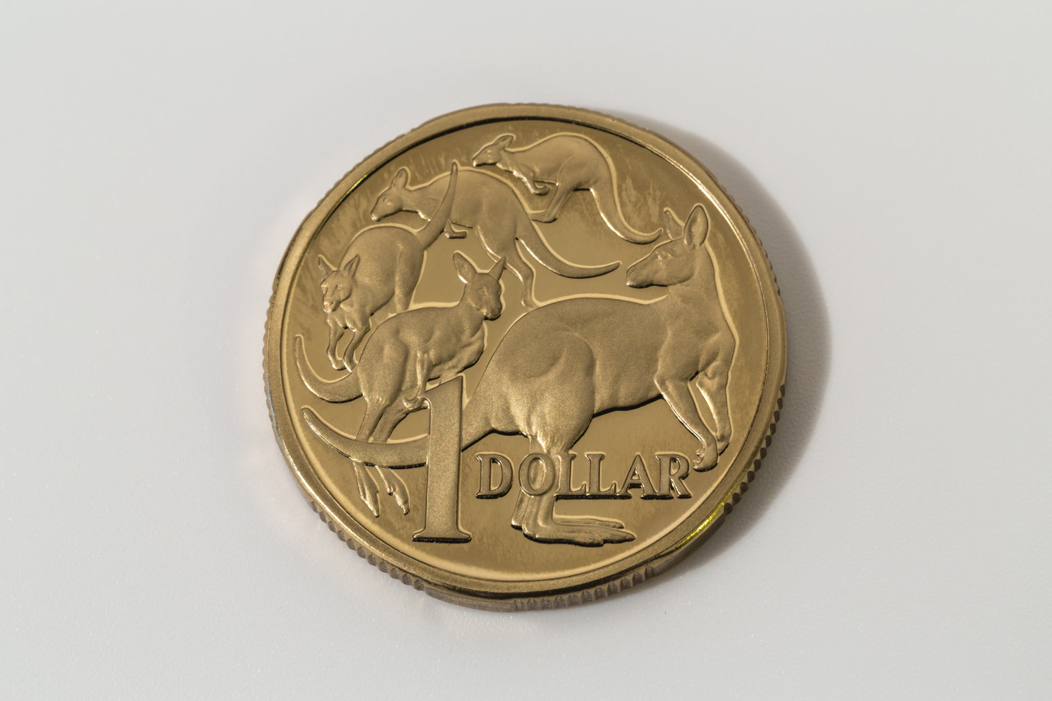 $1 pharmacy discount: single dollar coin