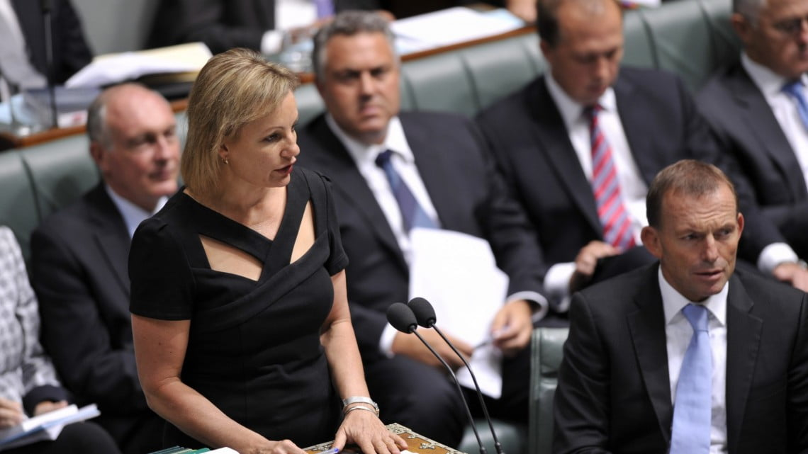 Pharmacy story: Sussan ley in parliament (in opposition)
