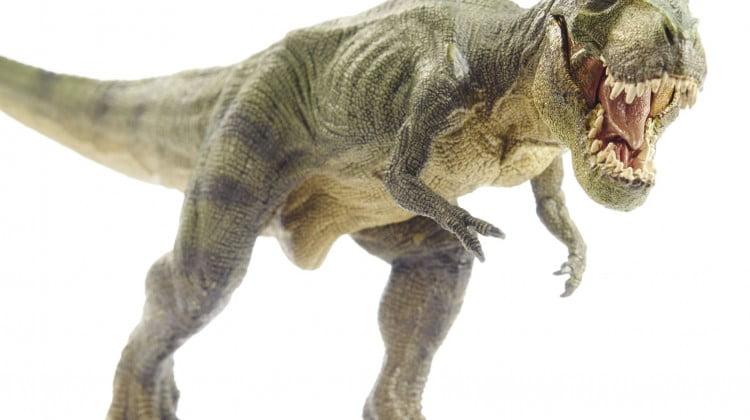T Rex toy monster