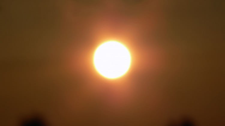 sun through heatwave