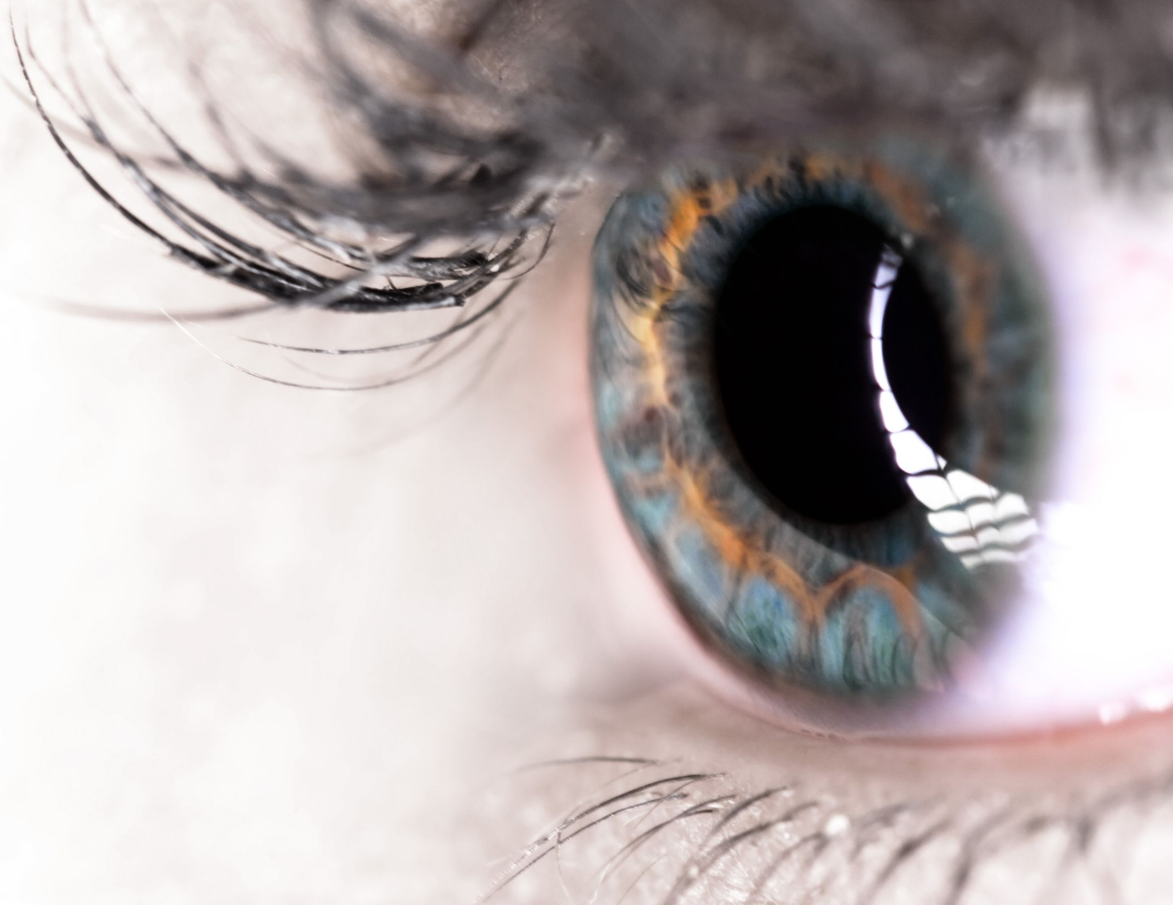 close-up of eye: glaucoma tips