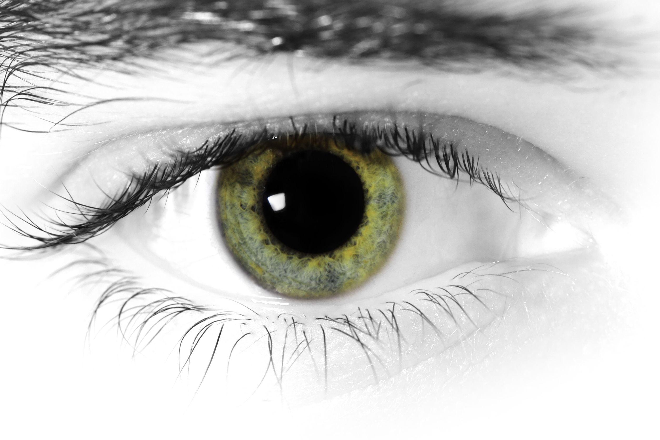 closeup of green eye