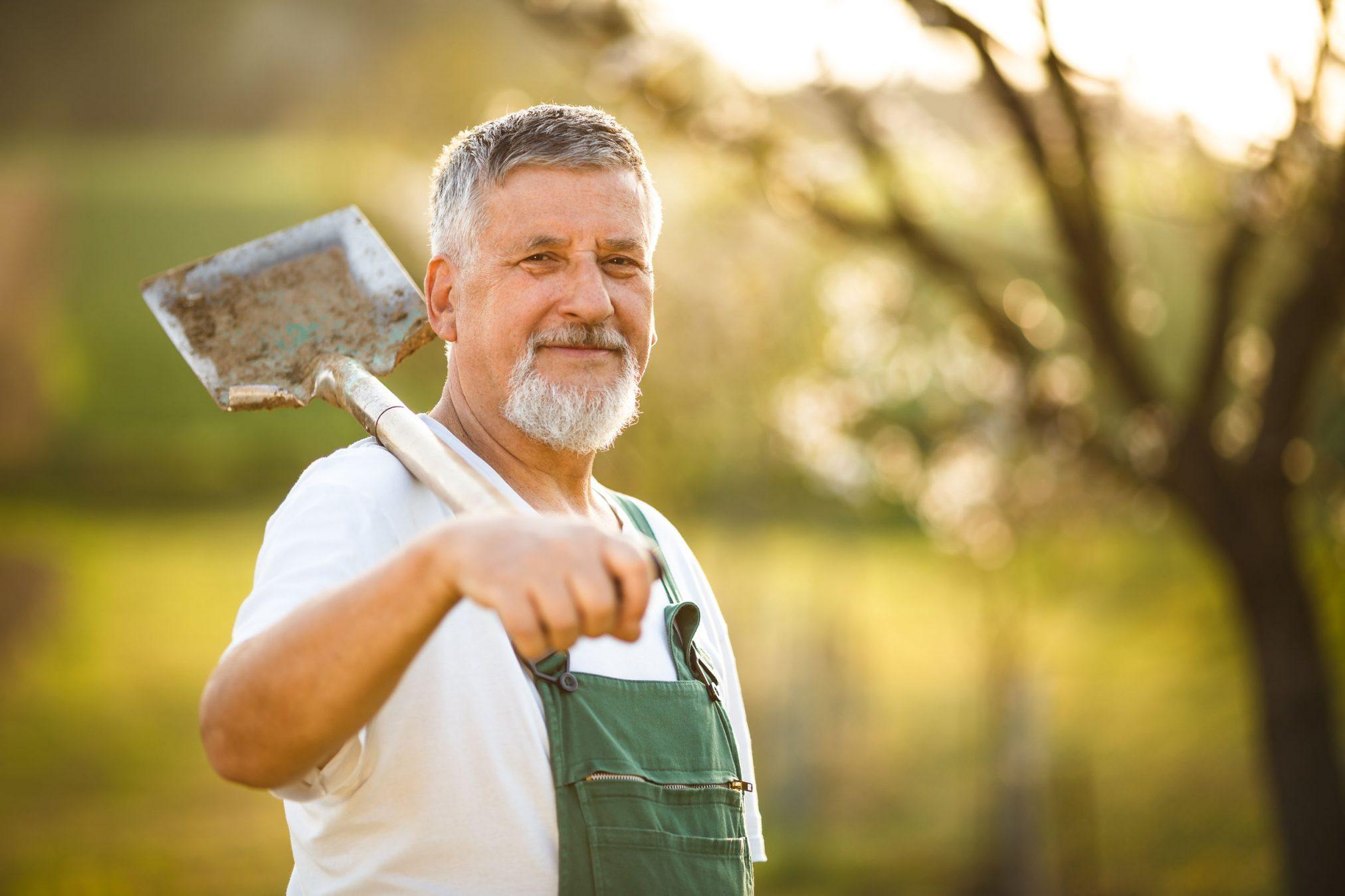 happy older man in garden with shovel