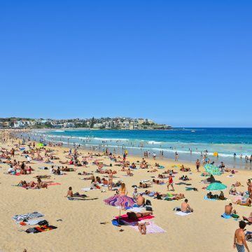 sunbathers at bondi