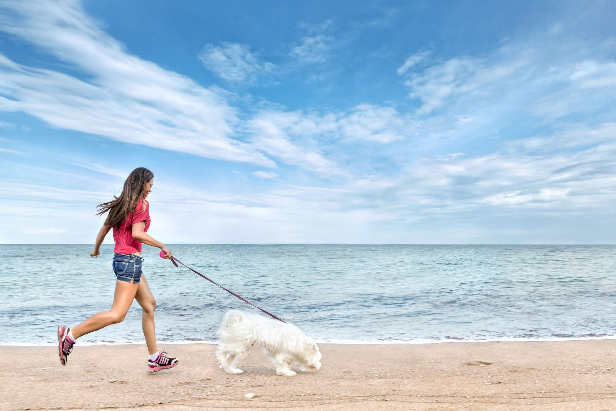 woman walking dog at the beach