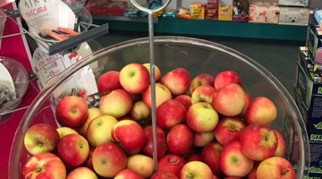 apples in a bin