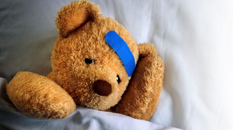 teddy bear with band-aid on head
