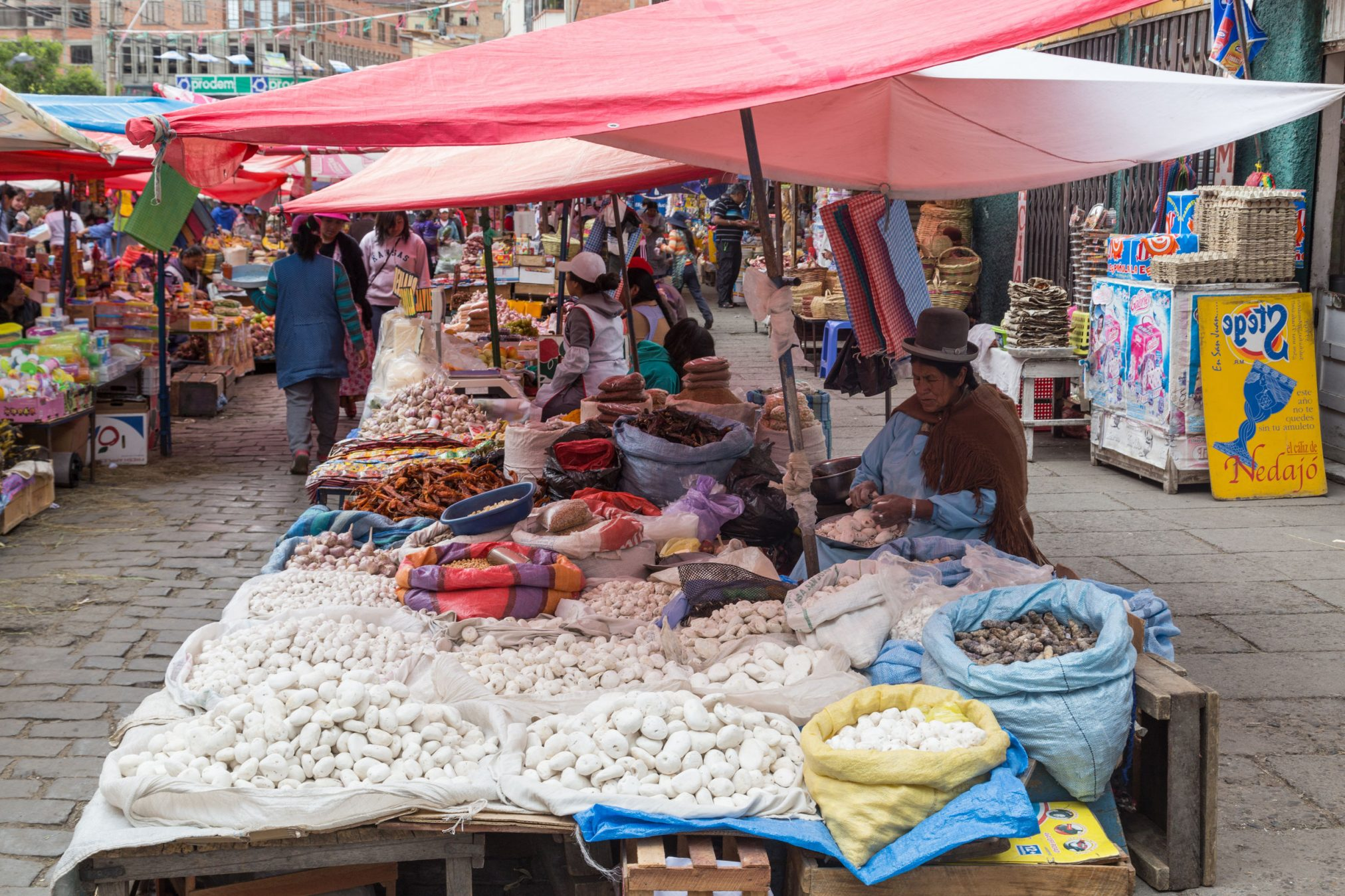 Food market in Bolivia