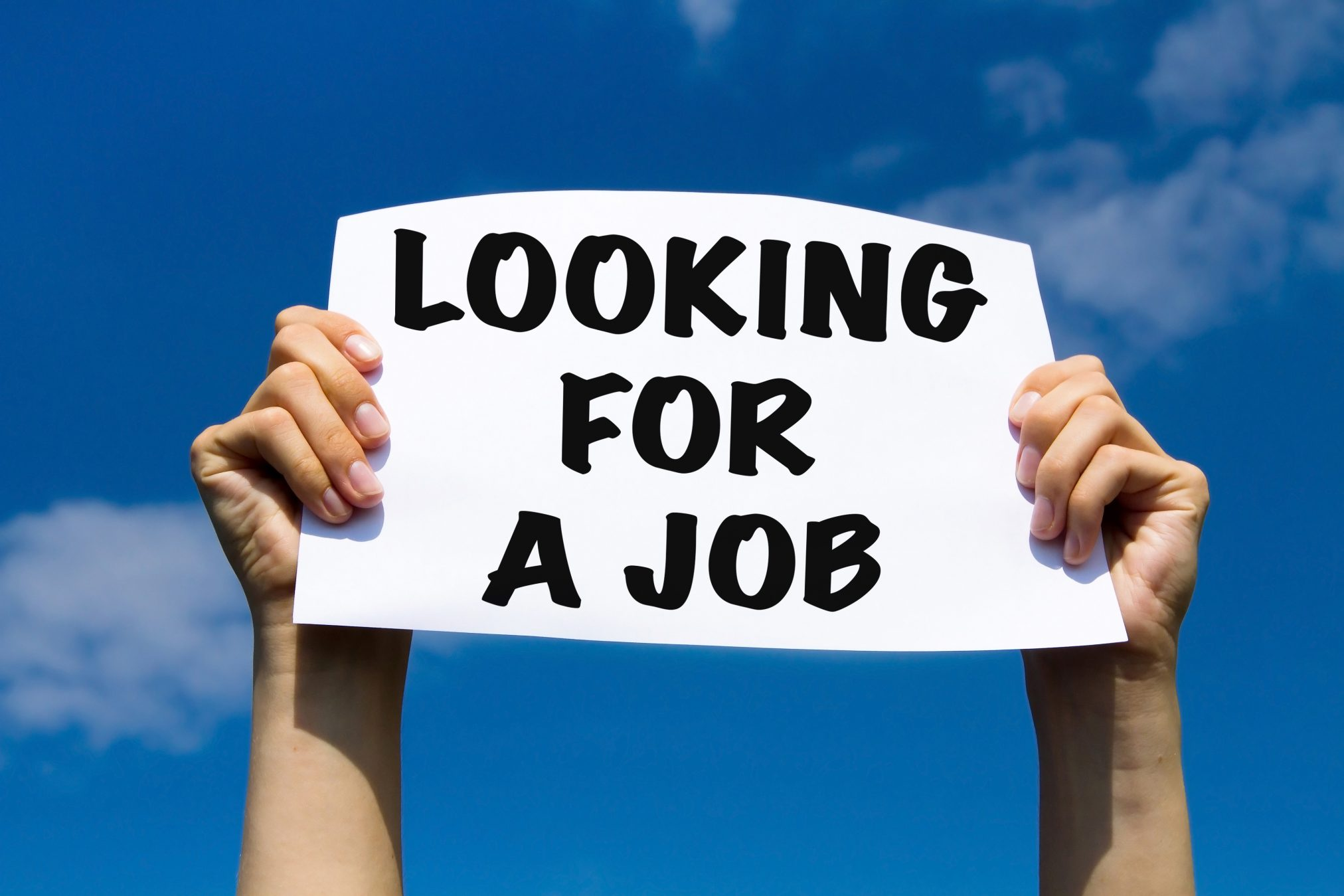holding a sign: 'looking for a job'