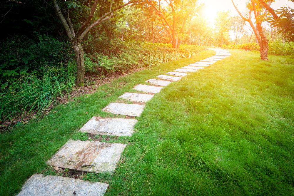 pathway future garden