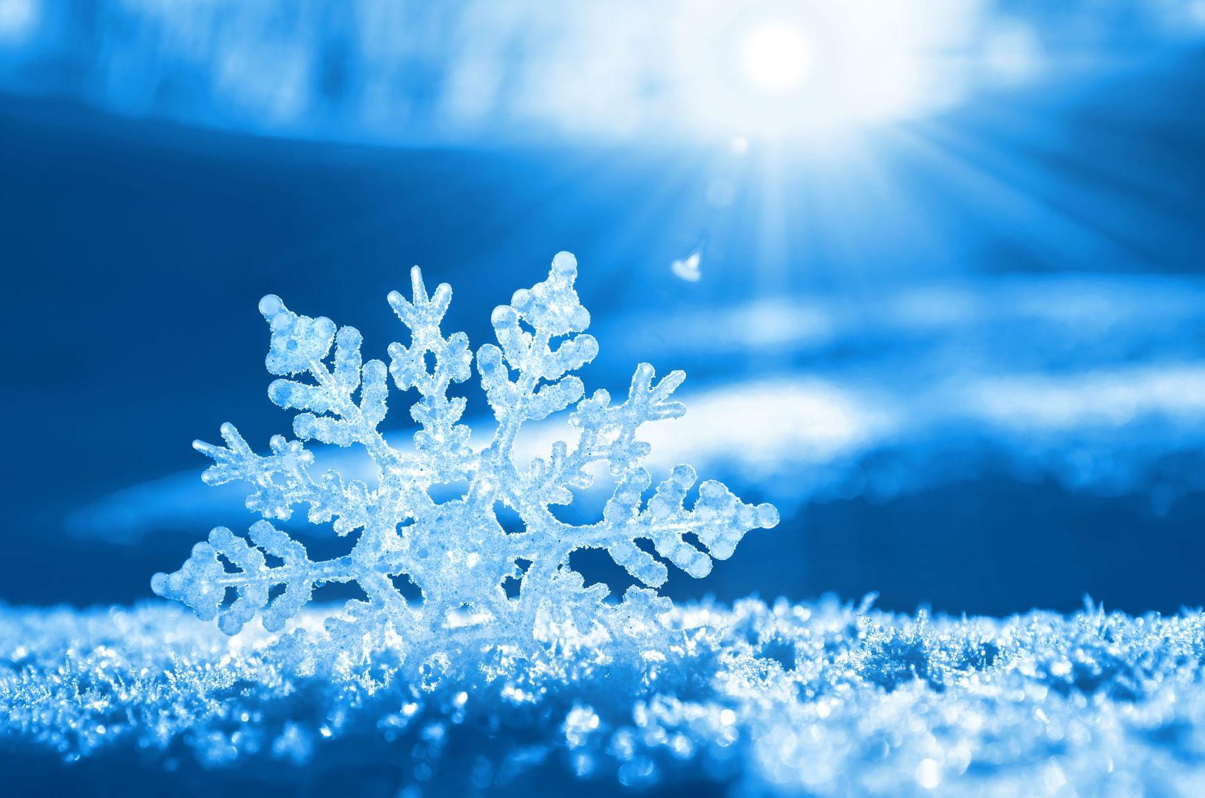 pretty up-close snowflake